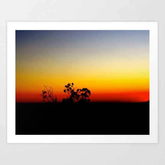 Trees in the Primaries Art Print