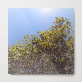 There Is No Autumn, Only Zul Metal Print