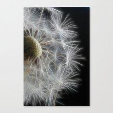 Dandelion Frost Canvas Print