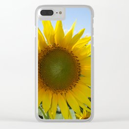 Kansas Bright and Colorful Sunflower Clear iPhone Case