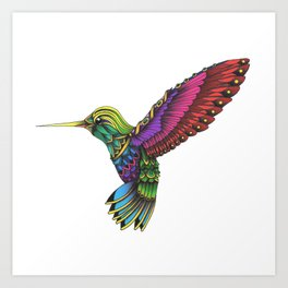 Color Ornate Colibri Art Print