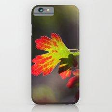 Autumn Leaf iPhone 6s Slim Case