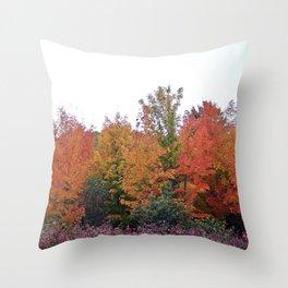 Autumn's Beauty Throw Pillow