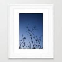 night sky Framed Art Prints featuring Night Sky by Shy Photog