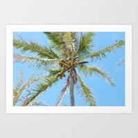 Palm Tree Photo Print Art Print