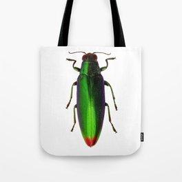 Chrysochroa Fulgidissima Jewel Beetle Tote Bag