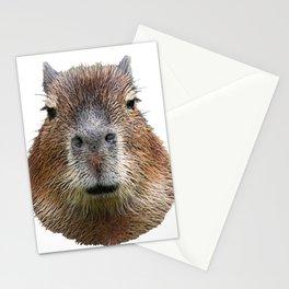 Capybara Face Hairy Front Classy Axpect Mammal Stationery Cards