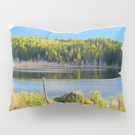 Mount Albert, Lac Neuf and the Beaver Lodge Pillow Sham