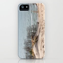 Foothill iPhone Case