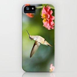 Hummingbird Hovering iPhone Case
