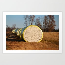 Round Bales Of Cotton Art Print