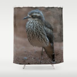 Bush Stone-Curlew Shower Curtain