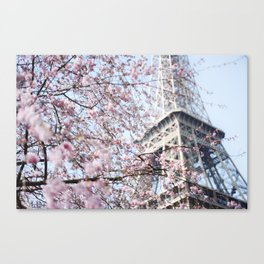 Eiffel Tower with Cherry Blossoms Canvas Print