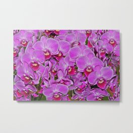 Pink Orchid Joy Metal Print