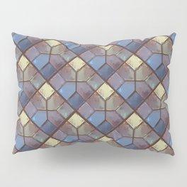 See Through Pillow Sham