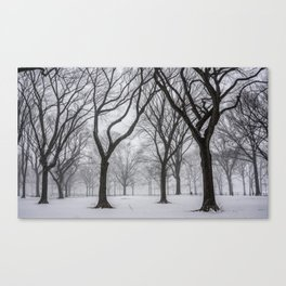 NYC Winter In Central Park Canvas Print