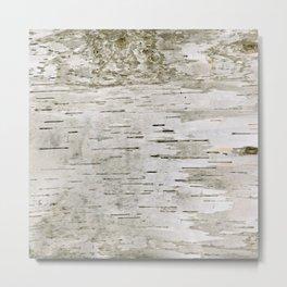 Birch Bark Skin Metal Print
