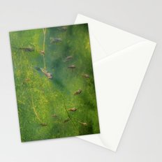 Bluegill Stationery Cards