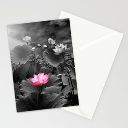 Lotus Flower on the pond, black-and-white background  Stationery Cards