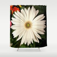 daisy Shower Curtains featuring Daisy by infloence