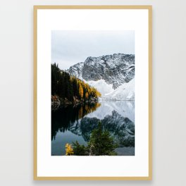 Golden Larches of Blue Lake Framed Art Print