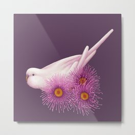 White Budgerigar Metal Print