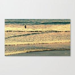 Golden Boy Canvas Print