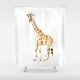 Giraffe 2012 Shower Curtain