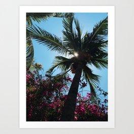 EL SALVADOR PALM TREES Art Print