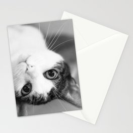 Upside down cat Stationery Cards