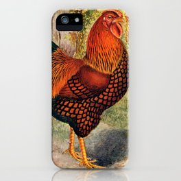 Colorful Chickens | Bunte Hühner iPhone Case