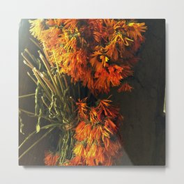 Onism  Metal Print