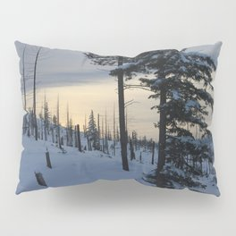 Deeper Drifts Pillow Sham