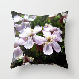 Watercolor Flower, Moss Campion 01, St Mary's Glacier, Colorado Throw Pillow