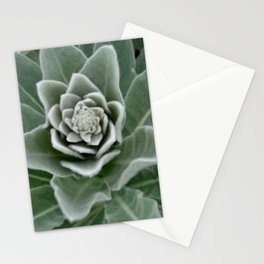 Golden Ratio in a Wild Weed Stationery Cards