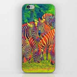 AnimalColor_Zebra_002_by_JAMColors iPhone Skin