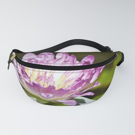 Pretty Waterlily - Reay of Light Photography Fanny Pack
