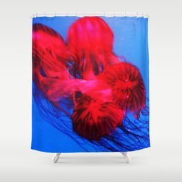 Underwater Ballerinas Shower Curtain