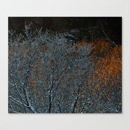 Winter Sunset Photography Print Canvas Print