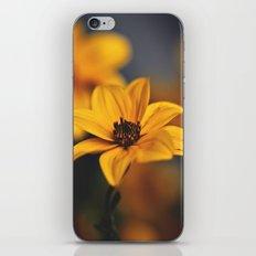 As the Sun iPhone & iPod Skin