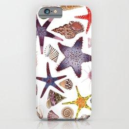 SEASHELLS & STARFISH (WHITE) iPhone Case