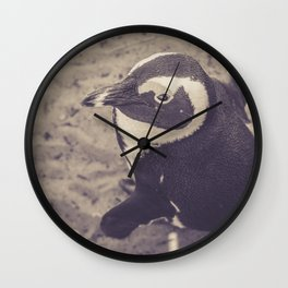 Adorable African Penguin Series 2 of 4 Wall Clock