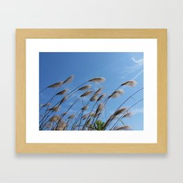 Reeds in the Wind Framed Art Print