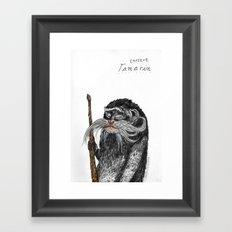 Emperor Tamarin Framed Art Print
