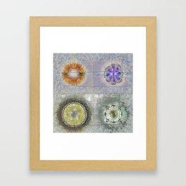 Antonymies Fineness Flower  ID:16165-071103-38151 Framed Art Print
