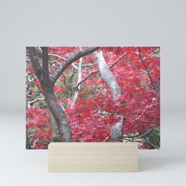Japanese Maple Tree Mini Art Print