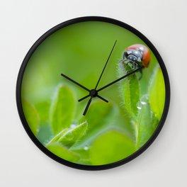 The Ladybug Wall Clock