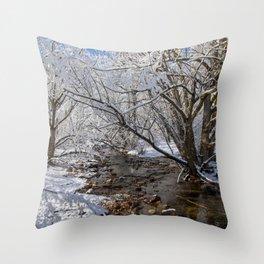 South Boulder Creek Throw Pillow