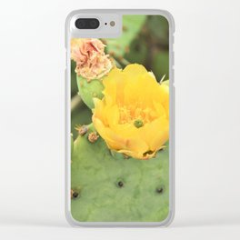 Desert Rose Clear iPhone Case