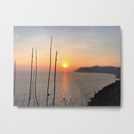 Fresh Sunset Metal Print